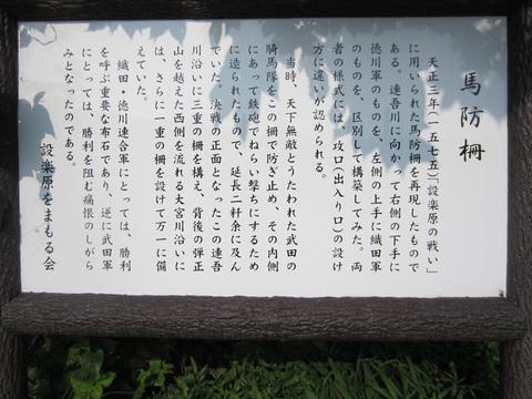 20110816_051